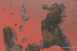Rust and Peeling Paint Picture
